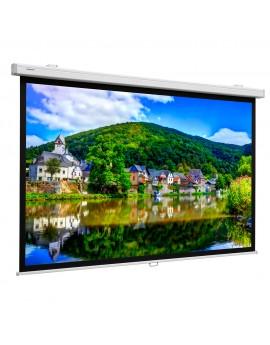 PROJECTA ProScreen 200x153 MW